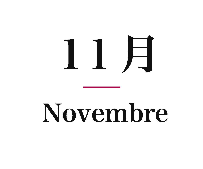Ivs_calender_11